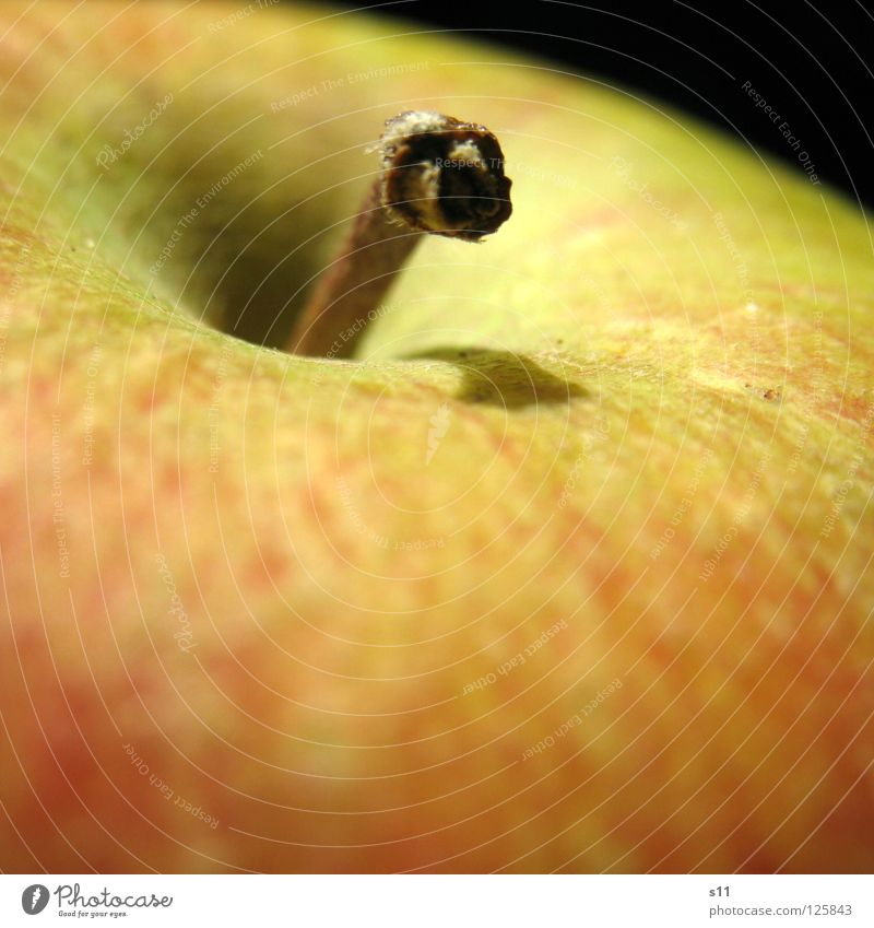 apple Crunchy Juicy Sweet Round Healthy Vitamin Red Yellow Green Macro (Extreme close-up) Close-up Fruit Anger Smoothness Apple Stalk Nature