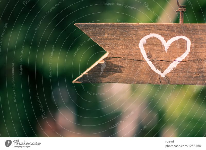To the heart Valentine's Day Wedding Wood Sign Heart Arrow Love Old Brown Green Spring fever Infatuation Romance Beginning Idyll Colour photo Exterior shot