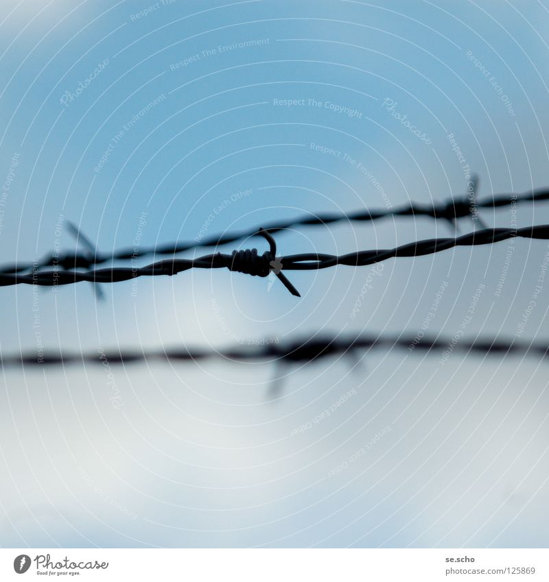 demarcations Barbed wire Border Jump Fence Peace Sky Barrier Blue Freedom