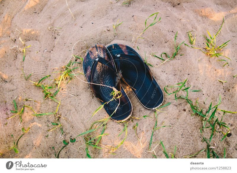 summer evenings Nature Relaxation Joy Beach Life Grass Coast Style Freedom Lifestyle Moody Sand Wild Leisure and hobbies Happiness Trip