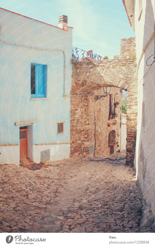 In a small town Summer vacation Sardinia Village Deserted House (Residential Structure) Gate Wall (barrier) Wall (building) Facade Window Door Street