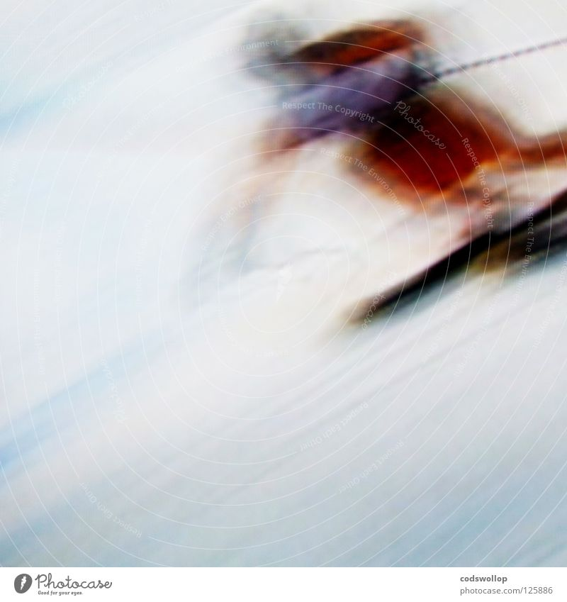 ski sunday Skis Skier Downhill race Concentrate Winter sports Sporting event Competition Speed blur Snow downhill Movement befogged quick
