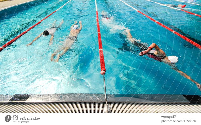 heat-free Sports Sporting event Triathlon Swimming Swimming & Bathing Swimming pool Human being Masculine 5 Group Wet Athletic Blue Gray Red White