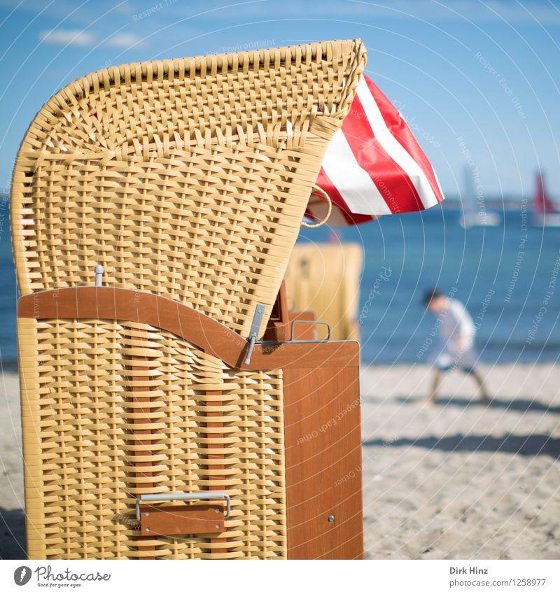 Human being Sky Child Nature Blue Summer Water Sun Ocean Joy Beach Environment Life Coast Healthy Happy