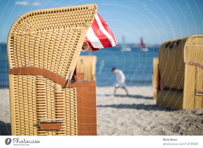 Beach day V Lifestyle Environment Nature Sand Water Sky Summer Coast Bay Baltic Sea Ocean Warmth Blue Joy Joie de vivre (Vitality) Serene Relaxation Tourism
