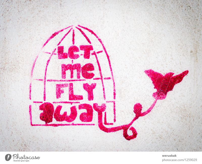 Pink stencil graffiti with bird leaving a cage Freedom Art Work of art Painting and drawing (object) Culture Subculture Street Bird Concrete Graffiti Dream