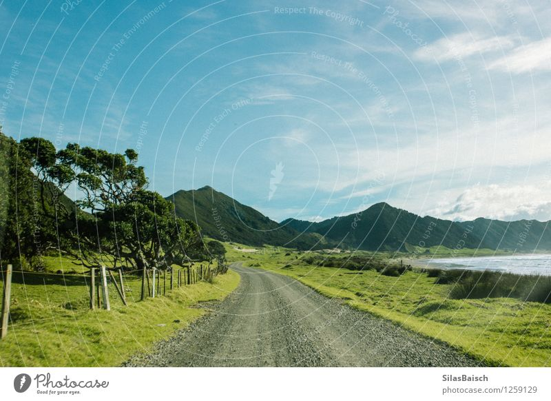 Endless Nature Vacation & Travel Plant Summer Sun Tree Ocean Landscape Clouds Far-off places Beach Mountain Environment Street Coast Freedom