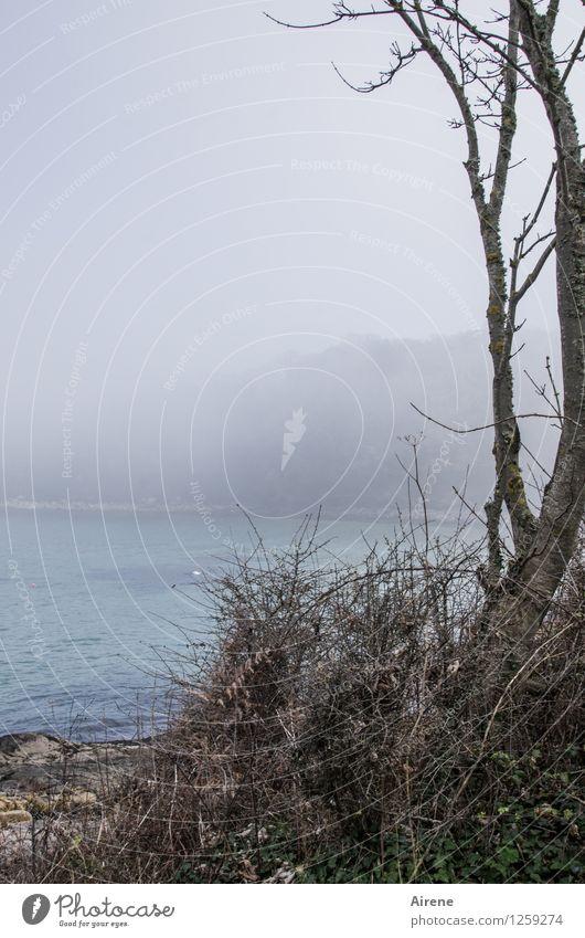 Blue Ocean Landscape Beach Coast Gray Fog Esthetic Bay Turquoise England English Channel