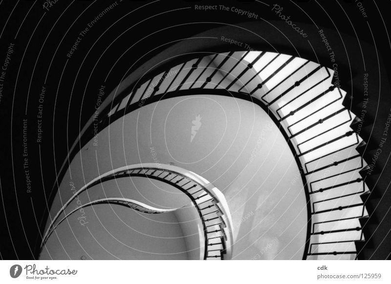 Interior views II Staircase (Hallway) Banister Story Wall (building) Building Construction Light Pure Simple Round Curved Pattern Swing Filming Circle Dimension