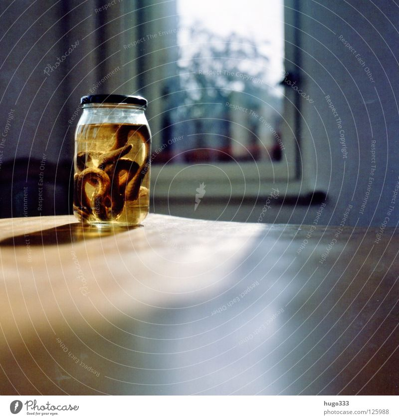 Sun Yellow Death Window Wood Glass Table Thin Long Poison Snake Reptiles Medium format Furniture Preserving jar