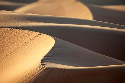 Nature Vacation & Travel Landscape Far-off places Movement Exceptional Line Moody Sand Contentment Elegant Idyll Esthetic Adventure Round Dry