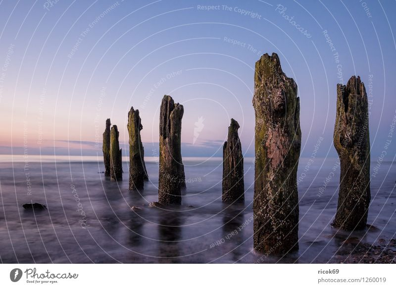 groynes Relaxation Vacation & Travel Beach Ocean Waves Nature Landscape Water Cloudless sky Coast Baltic Sea Stone Wood Blue Romance Idyll