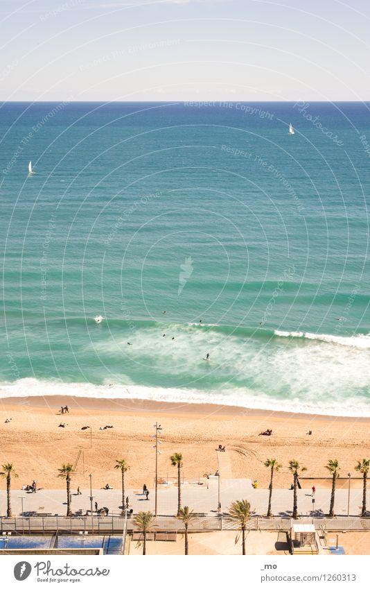 beach day Swimming & Bathing Surfing Float in the water Summer Summer vacation Sun Sunbathing Beach Ocean Waves Sea water Sports Aquatics Sailing Human being