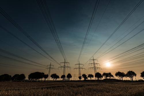 Sky Nature Summer Sun Tree Landscape Energy industry Field Bushes Tall Large Beautiful weather Electricity pylon Transmission lines