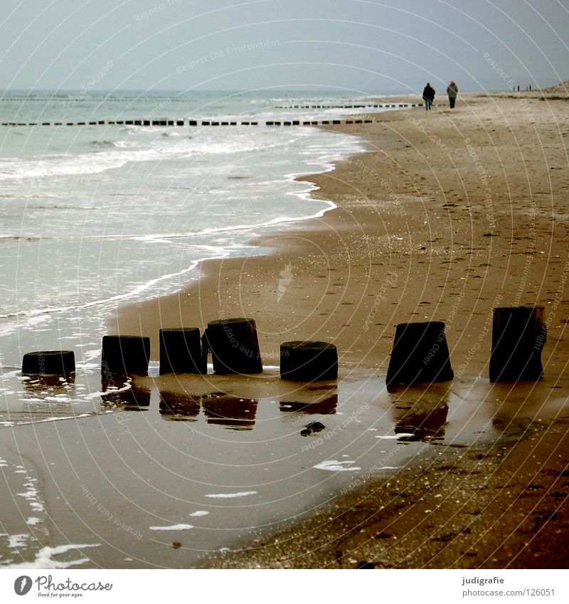 Human being Water Sky Ocean Green Blue Beach Vacation & Travel Calm Colour Cold Wood Gray Couple Sand Line
