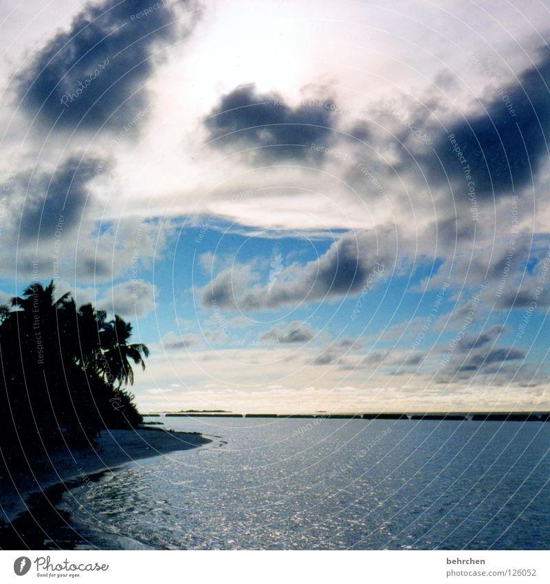 Water Sky Ocean Summer Beach Vacation & Travel Clouds Island Asia To enjoy Palm tree Wanderlust Maldives Paradise Dream island Indian Ocean