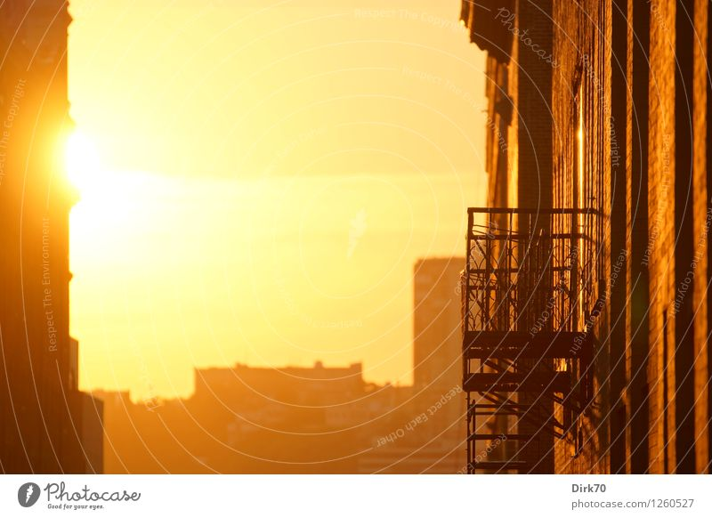 Light up my day Living or residing Flat (apartment) House (Residential Structure) Loft Sky Sun Sunrise Sunset Sunlight Summer Climate Beautiful weather Warmth