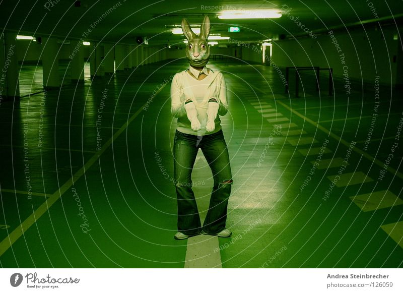 Green Creepy Obscure Traffic infrastructure Hare & Rabbit & Bunny Parking garage Foot race