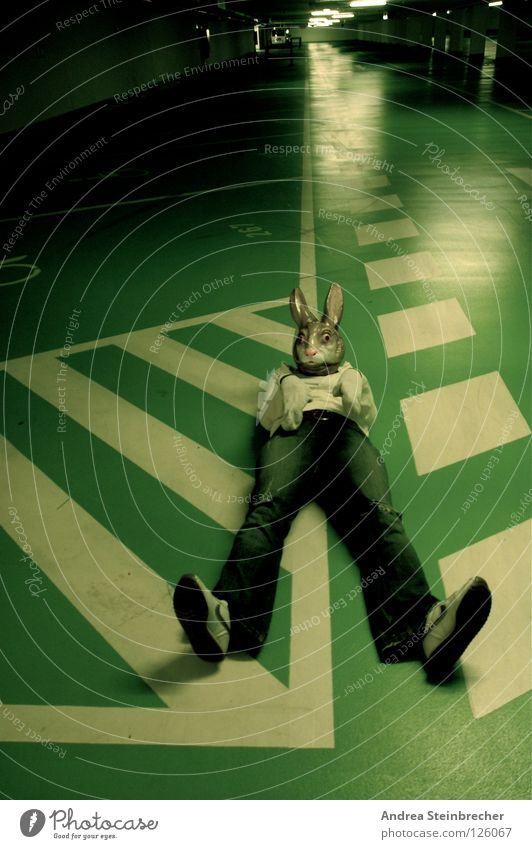 Green Calm Stripe Obscure Traffic infrastructure Hare & Rabbit & Bunny Parking garage Traffic lane