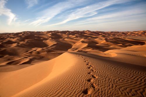 Nature Vacation & Travel Beautiful Loneliness Landscape Far-off places Exceptional Moody Above Sand Horizon Elegant Esthetic Fantastic Romance Adventure