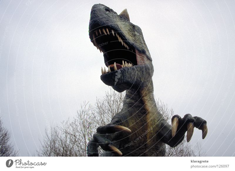 Sky Animal Fear Dangerous Threat Set of teeth Animal face Sculpture Aggression Bite Muzzle Monster Claw Saurians Dinosaur Alarming