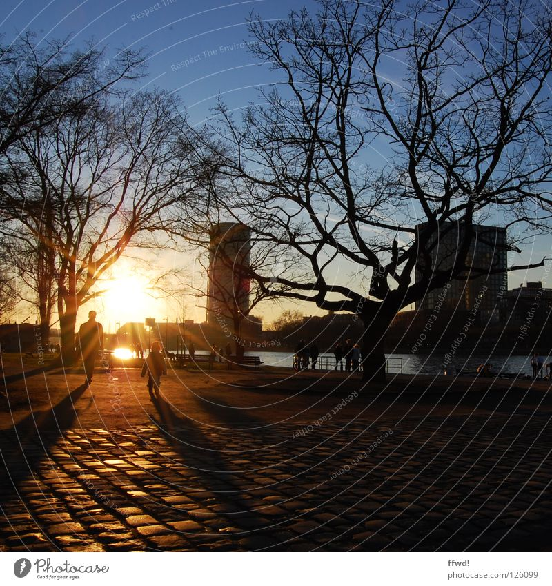 Human being Tree Sun Winter Coast Moody Going Walking Trip Action To go for a walk Branch River Traffic infrastructure Father Cobblestones