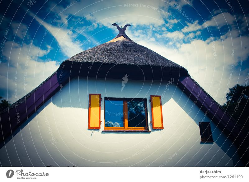 Summer House (Residential Structure) Wood Exceptional Germany Design Living or residing Illuminate Authentic To enjoy Trip Fantastic Joie de vivre (Vitality)