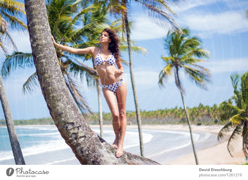 Human being Sky Nature Vacation & Travel Youth (Young adults) Summer Young woman Tree Relaxation Ocean Landscape Clouds Far-off places Beach 18 - 30 years Adults