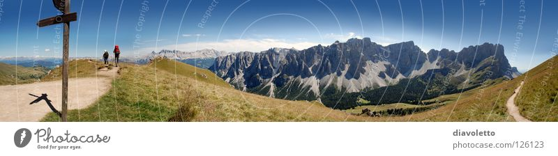 Nature Far-off places Mountain Hiking Large Vantage point Italy Alps Idyll Garden Peak Footpath Mountaineering Road marking Panorama (Format) Alpine pasture
