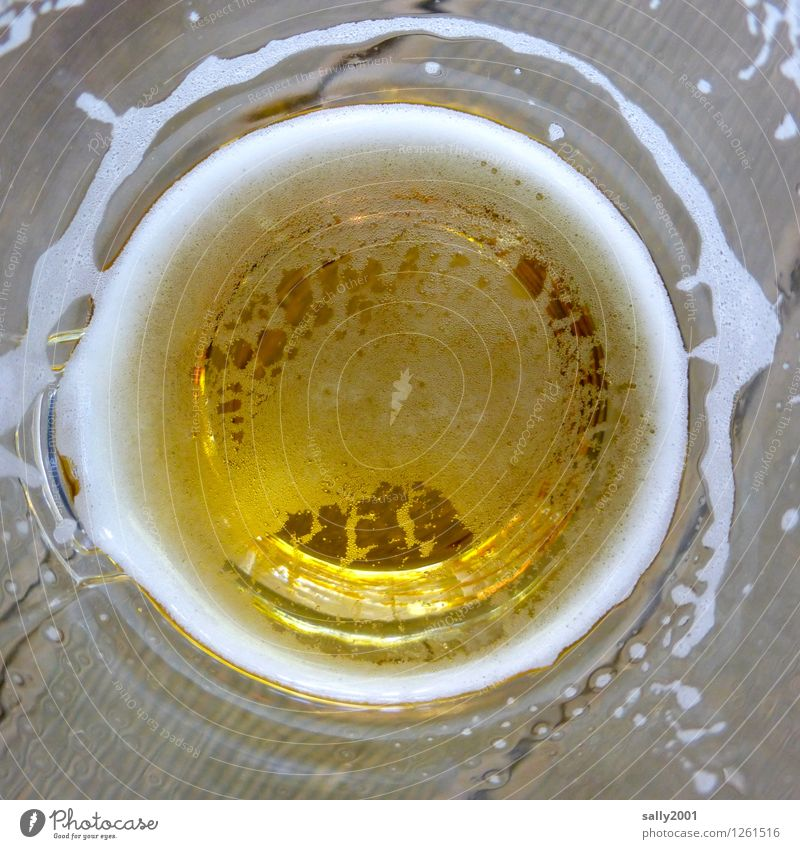 Relaxation Cold Yellow Healthy Leisure and hobbies Gold Glass To enjoy Beverage Drinking Pure Beer Fluid Alcoholic drinks Addiction Foam