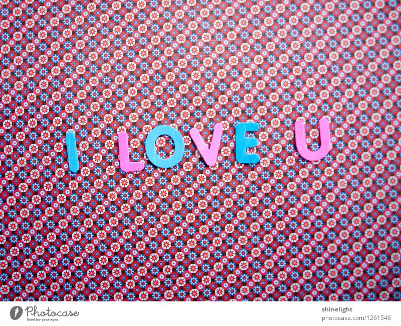 Blue Life Love Emotions Moody Pink Relationship Infatuation Lovers Honey Display of affection Declaration of love Love letter With love Love life