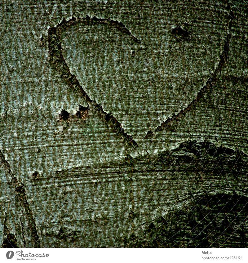 unfinished Tree Tree bark Furrow Eternalized Symbols and metaphors Relationship Couple Matrimony Friendship Incomplete Half Love Graffiti Mural painting Heart