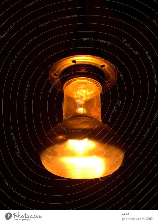 light bulb Electric bulb Yellow Living or residing Orange Bracket