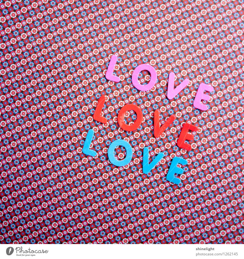 Blue Red Life Love Emotions Moody Pink Relationship Infatuation Lovers Honey Display of affection Declaration of love Love letter With love Love life