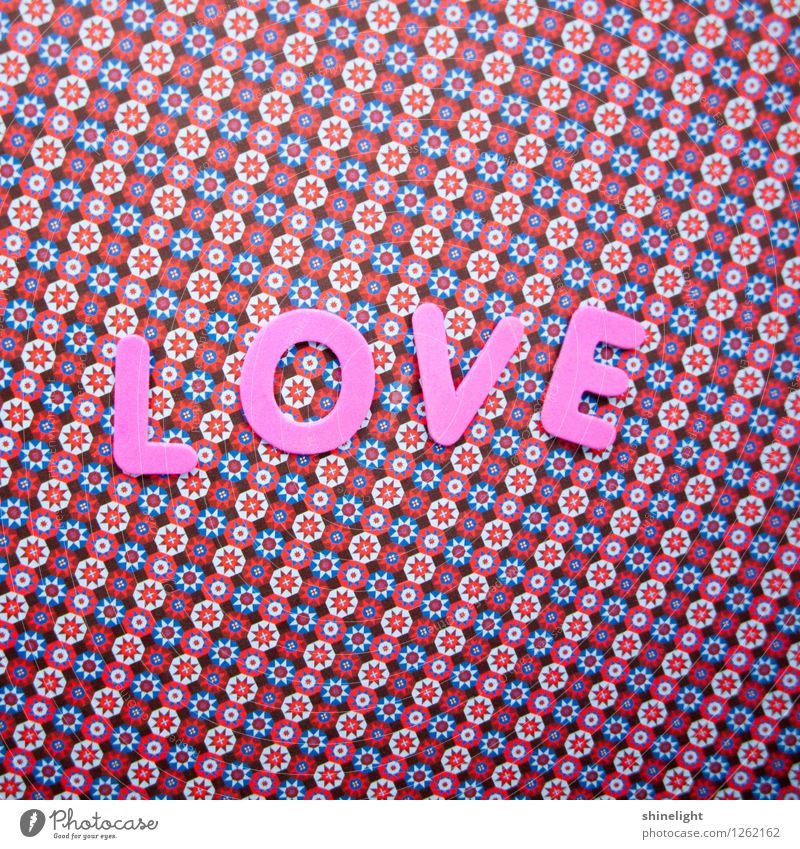 love Life Love Pink Emotions Moody Infatuation Declaration of love Love letter With love Honey Colour photo Copy Space top Copy Space bottom