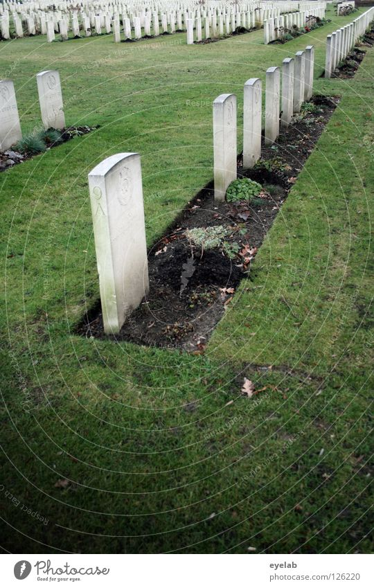 Green Calm Death Gray Line Park Arrangement Grief Transience Lawn End Past Row Distress Cemetery Grave