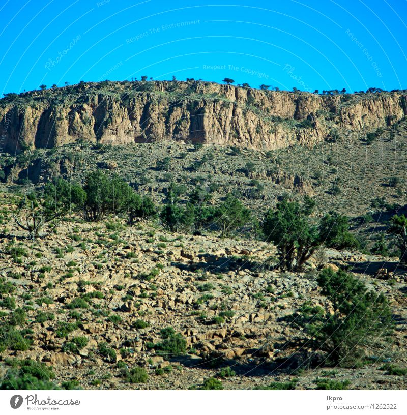 valley in africa morocco the atlas dry mountain Summer Winter Mountain Nature Landscape Plant Sky Horizon Climate Hill Rock Stone Line Old Loneliness Fear todra