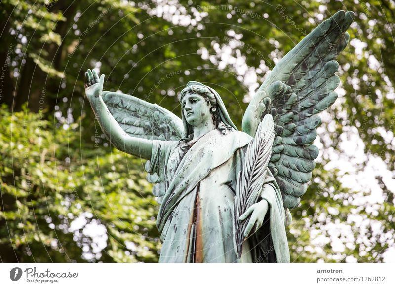 Hail thee Androgynous 1 Human being Green Self-confident Angel Statue Dismissive Feather Copper Rust Hamburg Ohlsdorf Cemetery Grief Colour photo Subdued colour