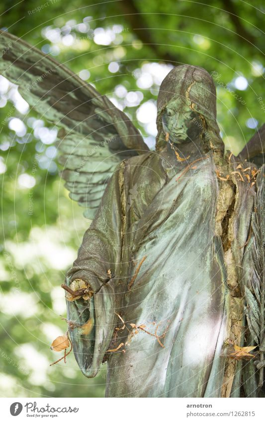broken angel 1/2 Androgynous Hair and hairstyles Face Think Harmonious Funeral service Feminine Hand Angel Statue Copper Cemetery Ohlsdorf Cemetery Colour photo