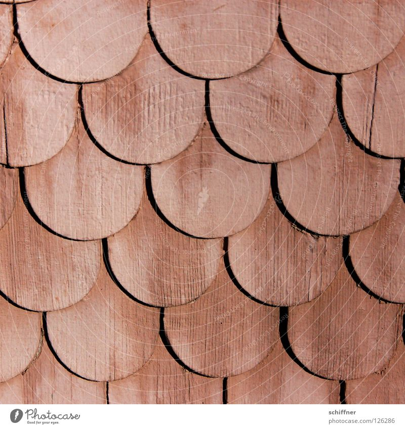 woodshed Wood Barn Roofing tile Cladding Wall cladding Wall (building) Pattern Background picture Craft (trade) scale pattern Shingle roof cladding