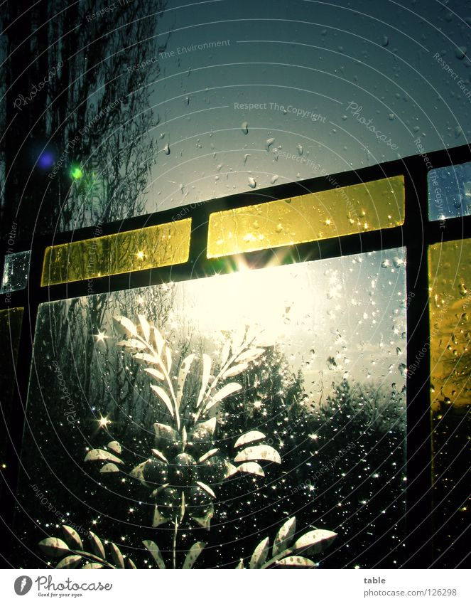 why worry... Rain Window Dark Tree Storm Gale Moody Sun Sunbeam Plate glass Soldering Glazier Glass blower Art Craft (trade) Glass painting Arts and crafts