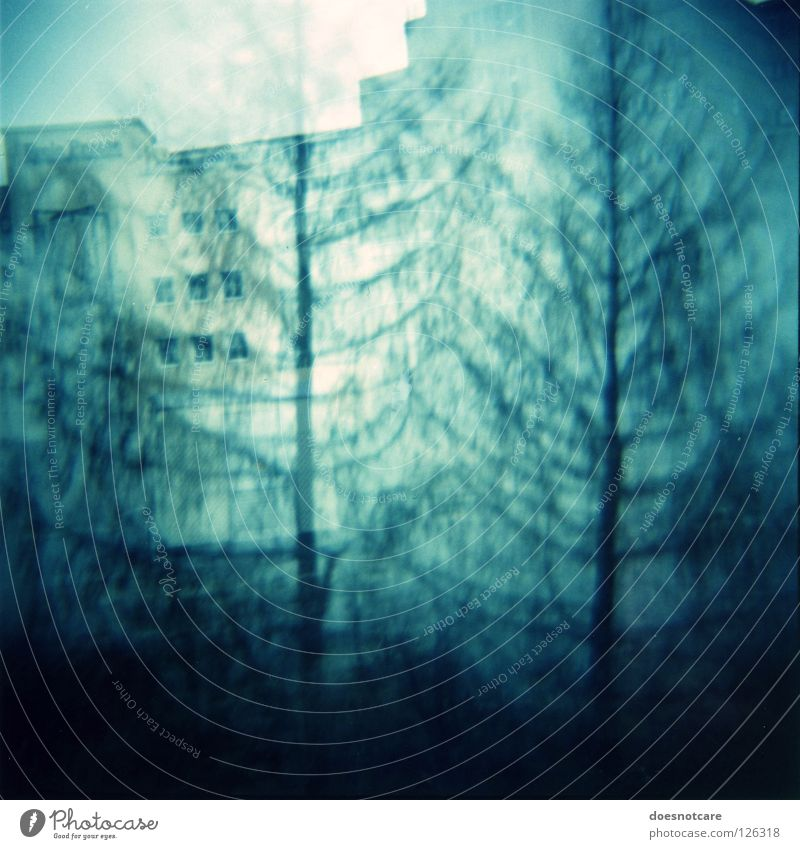 Ghost Spruces & Bleak House. Tree House (Residential Structure) Building Creepy Derelict Double exposure Eerie Spooky Vignetting Haunted house