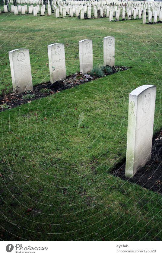 Green Calm Death Gray Line Park Arrangement Grief Transience Lawn End Past Row Distress Cemetery Grave