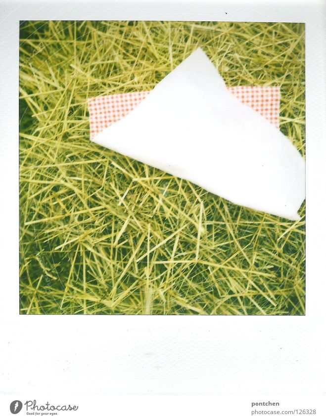 Polaroid Green Summer Yellow Relaxation Wind Trip Paper Floor covering Gale Americas Common Reed Checkered Rural Straw Serviette