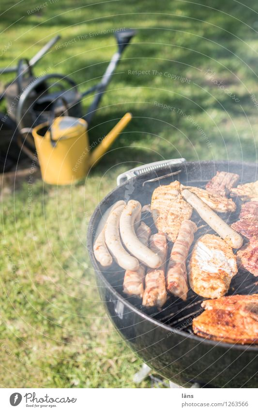Nature Summer Meadow Eating Garden Feasts & Celebrations Leisure and hobbies Wait Barbecue (event) Meat Barbecue (apparatus) Sausage Watering can