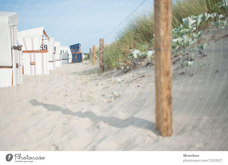 beach Vacation & Travel Trip Summer Summer vacation Sun Beach Ocean Island Coast Baltic Sea Fresh Dune Marram grass Usedom Zinnowitz Beach chair Beach dune
