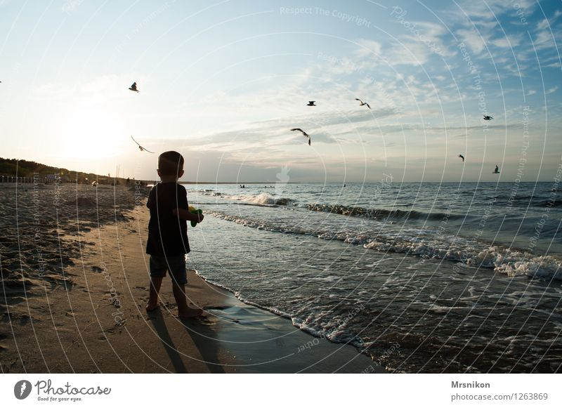 the little boy and the sea Vacation & Travel Adventure Far-off places Summer vacation Beach Ocean Waves Human being Child Boy (child) Infancy 1 3 - 8 years