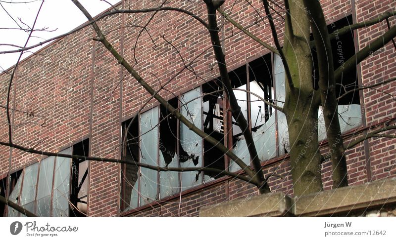 Window Wall (barrier) Building Architecture Glass Industrial Photography Derelict Warehouse