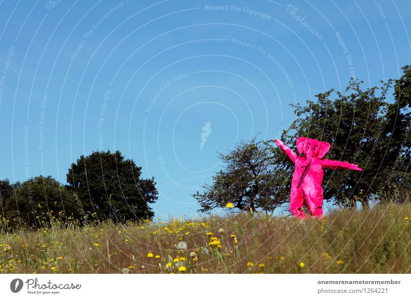 Nature Joy Animal Meadow Funny Happy Freedom Art Pink Esthetic Dance To go for a walk Discover Work of art Costume Carnival costume