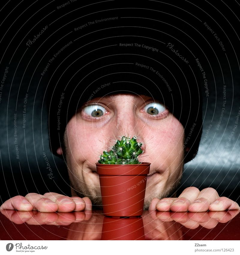 Grow up! Growth Looking Cap Black Facial hair Cactus Man Plant Red Self portrait Table Inverted Funny Crazy Gap Glittering Dark Hand Fingers To hold on Amazed